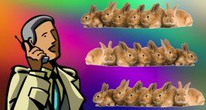 фото Разведение кроликов как бизнес выгодно или нет