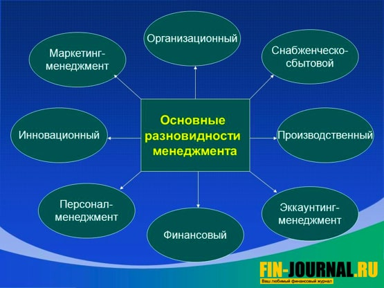фото основные разновидности менеджмента